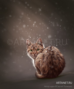 cat_and_snow