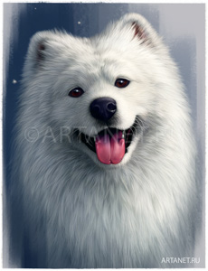 Samoyed_cg_drawing